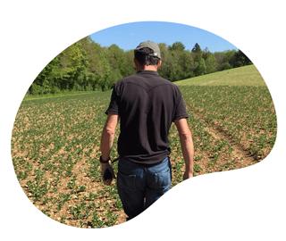 Agriodor est une startup de l'agritech